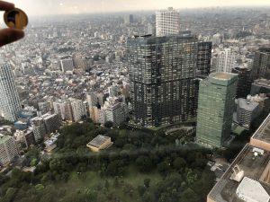 東京都庁展望風景