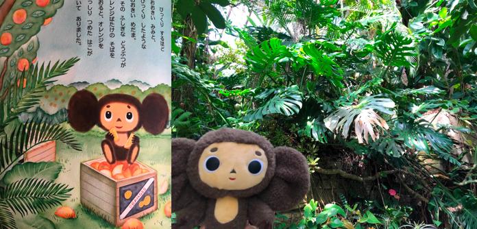 長崎バイオパークジャングル