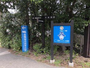 長崎ペンギン水族館 大学の隣