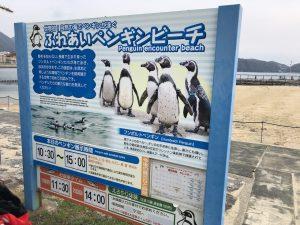 長崎ペンギン水族館 ふれあいビーチ